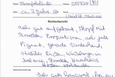 Richterbericht CDK Bundessieger Schau 2018-09-16