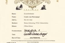 Urkunde CDK Golden Globe Show 2017-09-24