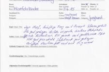 Richterbericht Internationale Schönheitschau 2016-05-08