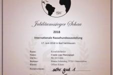 Urkunde CDK Jubiläumssieger 2018-06-17