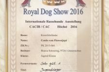 Urkunde CDK Royal Dog Show 2016-05-22